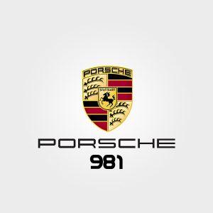 Akrapovic for Porsche 981
