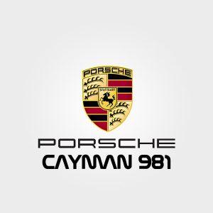 Akrapovic for Porsche Cayman 981